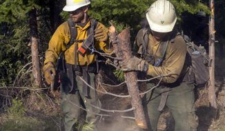 In this Aug. 17, 2018, photo provided by BLM/USDA Forest Service, members of a fire crew out of Lakeview, Ore., works on the Cougar Creek Fire in central Washington state. After being in firefights in Afghanistan and Iraq, members of the new elite crew are bringing their military experience to bear as they battle wildfires in the most rugged country back home The Lakeview Crew 7 is comprised almost entirely of U.S. military veterans. (Kari Greer/BLM/USDA Forest Service via AP)