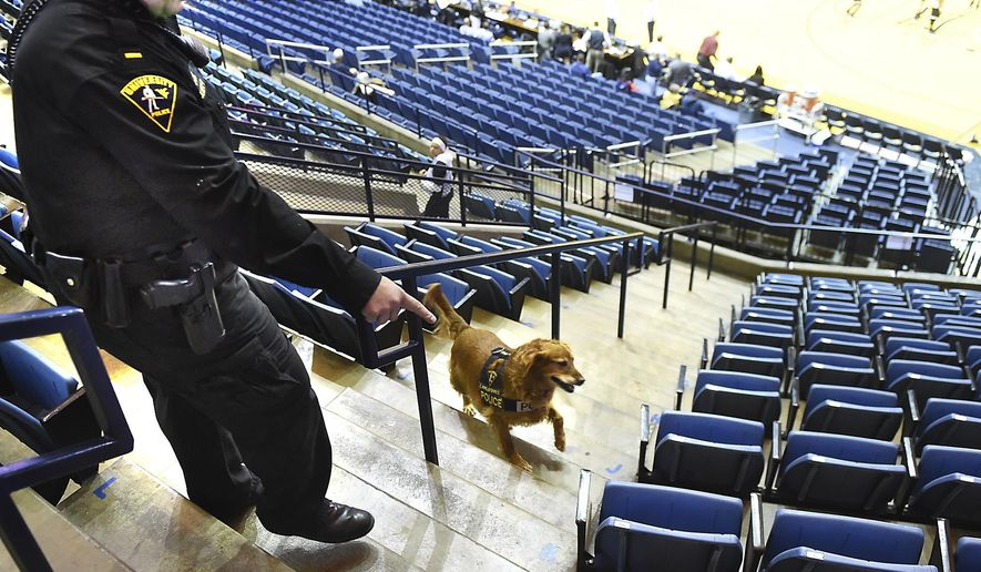In this recent photo, West Virginia University Police Lt Josh Cook and Ginger, a 7-year-old field golden retriever, sweep the Coliseum before fans enter for a college basketball game in Morgantown, W.Va. Cook said the canines and their handlers sweep before any event at the stadium or coliseum and the unit, the largest explosive K-9 unit in the state, has been asked to help with everything from political rallies to concerts. (Ron Rittenhouse/The Dominion-Post via AP)