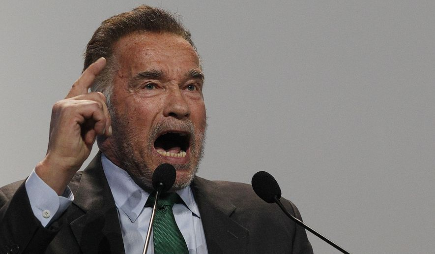 Actor Arnold Schwarzenegger delivers a speech during the opening of COP24 U.N. Climate Change Conference 2018 in Katowice, Poland, Monday, Dec. 3, 2018. (AP Photo/Czarek Sokolowski)
