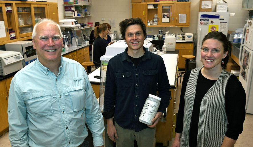 In this photo taken Nov. 29, 2018, from left, Kevin McKelvey, Thomas Franklin and Jessie Golding stand in the National Genomics Center for Wildlife and Fish Conservation in Missoula, Montana. A paw print in the snow contains enough genetic clues to identify the animal that made it, even if the track has been buried for five months. That discovery may revolutionize and simplify wildlife monitoring in remote places.  (Tom Bauer/The Missoulian via AP)