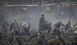 In this photo taken Wednesday, Dec. 5, 2018, a woman who scavenges recyclable materials from garbage for a living is seen through a cloud of smoke from burning trash, surrounded by Marabou storks who feed on the garbage, at the dump in the Dandora slum of Nairobi, Kenya. As the world meets again to tackle the growing threat of climate change, how the continent tackles the growing solid waste produced by its more than 1.2 billion residents, many of them eager consumers in growing economies, is a major question in the fight against climate change. (AP Photo/Ben Curtis)ea