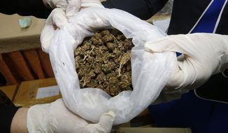 Thai officers show some marijuana before a news conference Bangkok, Thailand, Tuesday, Sept. 25, 2018. Thai police handed over around 100 kilograms of seized marijuana to be used for medical research Tuesday, as officials seek to produce pot-based medication. (AP Photo/Sakchai Lalit)