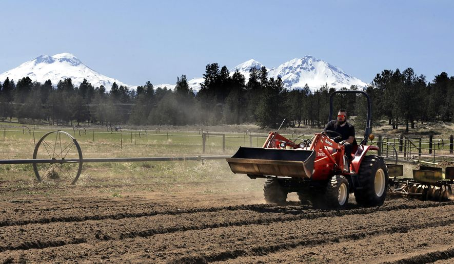 FILE - In this April 23, 2018 file photo, Trevor Eubanks, plant manager for Big Top Farms, readies a field for another hemp crop near Sisters, Ore.  Hemp is about to get the federal legalization that marijuana, its cannabis cousin, craves. That unshackling at the national level sets the stage for greater expansion in an industry seeing explosive growth through demand for CBDs, the non-psychoactive compound in hemp that many see as a way to better health. (AP Photo/Don Ryan, File)