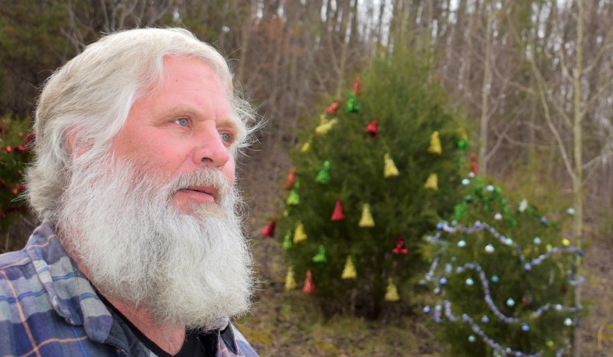 In this Nov. 29 2018 photo, Larry Williams decorates about 10 trees on the north end of Bradley Creek road near the Carters Valley road intersection in Kingsport, Tenn. Earlier this year Williams was diagnosed with Parkinson's Disease. He's experiencing some of the symptoms such as shaking hands, but that hasn't discouraged him from making this year's roadside Christmas Tree display his best ever. (Jeff Bobo/The Kingsport Times-News via AP)