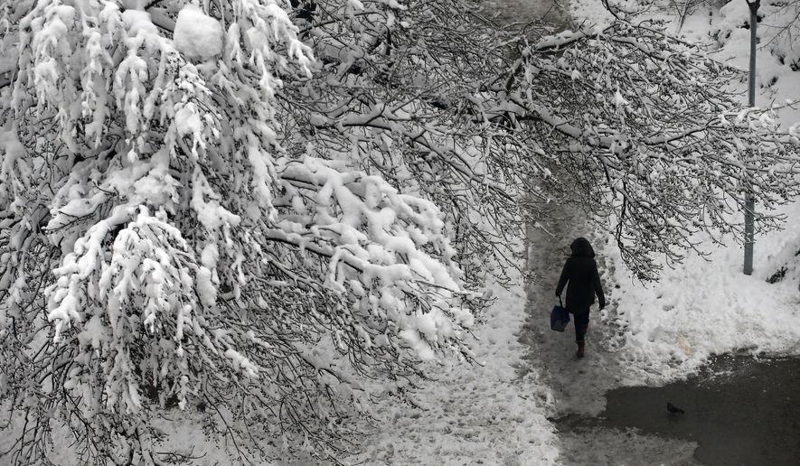 A woman walks through a snow covered park in Belgrade, Serbia, Monday, Dec. 17, 2018. Serbia and neighboring countries have been blanketed with snow in the past few days, which has slowed down traffic, disrupted power supplies and blocked access to some remote villages. (AP Photo/Darko Vojinovic)