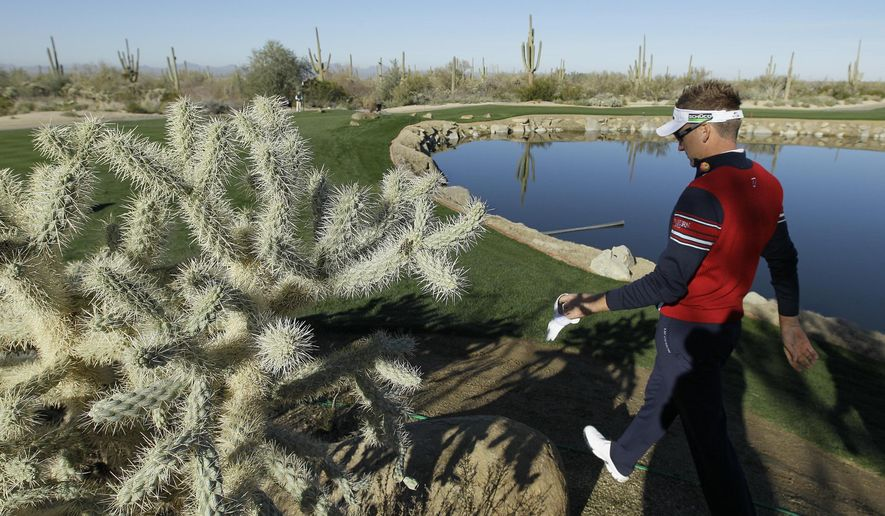 FILE - In this Feb. 22, 2012, file photo, England's Ian Poulter walks by a jumping cholla cactus on his way to the fourth tee during the Match Play Championship golf tournament in Marana, Ariz. A parcel of land that is prime habitat for the so-called teddy bear cactus has been purchased for a Mojave Desert conservation organization. The cactus is formally called the cholla, but it earned its cuddly but misleading nickname because dense coverings of painful spines resemble the fuzzy limbs of a teddy bear. (AP Photo/Eric Risberg, File)