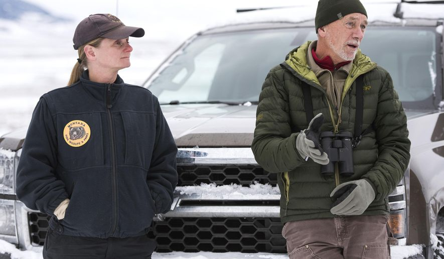 In this Friday, Dec. 14, 2018 photo Montana Fish, Wildlife and Parks Biologist Julie Cunningham and Bob Garrot, a Montana State professor and biologist, discuss the transplant of some bighorn sheep from the herd near Quake Lake to Wolf Creek south of Cameron, Mont. Cunningham, who has worked for FWP for 12 years, is the person in charge of the sheep herd that lives near Quake Lake, known as the Taylor-Hilgards herd. (Rachel Leathe/Bozeman Daily Chronicle via AP)