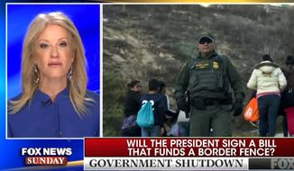 White House counselor Kellyanne Conway discusses border security during a Fox News Sunday appearance, Dec. 30, 2018. (Image: Fox News screenshot)