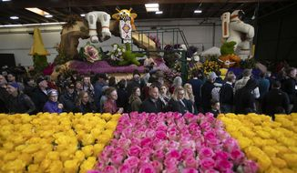 Visitors look at Rose Parade floats Monday, Dec. 31, 2018, in Pasadena, Calif. Final preparations are underway for Pasadena's 130th Rose Parade on New Year's Day, which forecasters say could challenge spectators with chilly and blustery conditions as a cold Santa Ana wind event develops in Southern California. (AP Photo/Jae C. Hong)