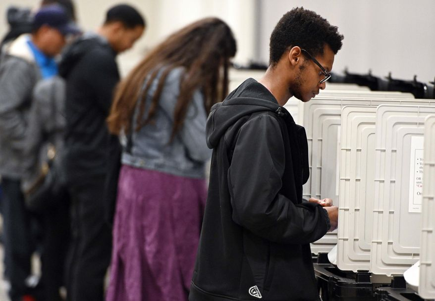 In this Oct. 27, 2018 file photo, people cast their ballots ahead of the Nov. 6, general election at Jim Miller Park in Marietta, Ga. (AP Photo/Mike Stewart, File) **FILE**