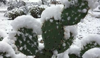 Snow partially covers a cactus outside of Tucson near Vail, Ariz., Wednesday, Jan. 2, 2018. Southern Arizona and other parts of the Southwest are seeing unusually cold temperatures as a winter storm moves through the region. (Jessica Howard via AP)