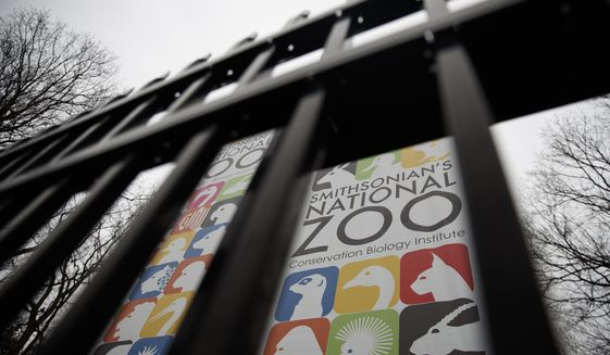 The Smithsonian's National Zoo has increased security after teens set off fireworks that frightened patrons and a nearby shooting left two teens hospitalized at the start of the annual ZooLights festival this weekend.