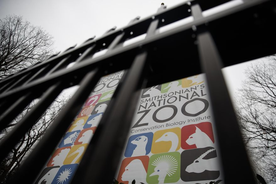 The Smithsonian's National Zoo has increased security after teens set off fireworks that frightened patrons and a nearby shooting left two teens hospitalized at the start of the annual ZooLights festival this weekend. (AP Photo/Carolyn Kaster)