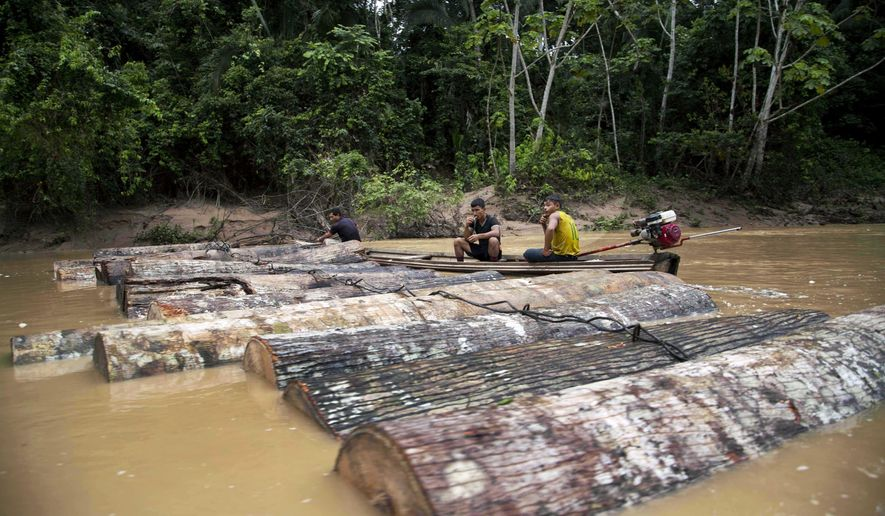 FILE - In this March 17, 2015 file photo, Ashaninka Indian men, identified by locals as illegal loggers, tie tree trunks together to move them along the Putaya River near the hamlet of Saweto, Peru. On De. 21, 2018, the top U.S. trade official contends Peru's government is not living up to its commitment to combat illegal logging in a case that could have broader implications as Washington debates ratifying a new North American free trade deal. (AP Photo/Martin Mejia, File)