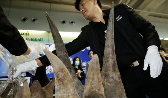 In 2017, Thai customs authorities in Bangkok seized 21 rhinoceros horns smuggled from Ethiopia. Together, they were worth almost $5 million. (Associated Press/File)