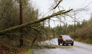 Caution tape marks a nearly downed tree next to Old Pacific Highway near Nisqually, Wash., Sunday, Jan. 6, 2019, as Puget Sound Energy reported more than 200,000 customers were without power throughout its service area about 6 a.m. According to PSE's outage map, areas in South Sound most affected by the storm include east Pierce County, northeast Thurston County and south Thurston County. (Steve Bloom/The Olympian via AP)