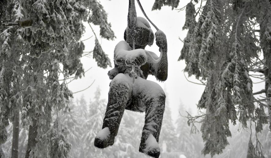 A promotion doll covered with ice and snow hangs between trees near a climbing park at the Wasserkuppe, Germany, Friday, Jan 11, 2019.  (Uwe Zucchi/dpa via AP)