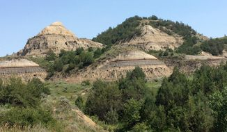 FILE - This July 5, 2018, file photo, shoes eroded hills in the Theodore Roosevelt National Park in western North Dakota. Construction of a Theodore Roosevelt Presidential Library in Medora would elevate North Dakota's reputation around the globe, Gov. Doug Burgum said Wednesday, Jan. 9, 2019, in pitching to state lawmakers the idea of using $50 million in state money for the project. The foundation working to develop a presidential library envisions a $200 million facility in Medora, at the entrance to the park. (AP Photo/Blake Nicholson, File)