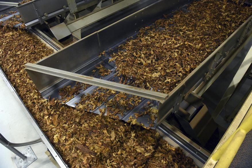 In this Dec. 1, 2016, file photo, processed tobacco heads down the line at a tobacco company in Danville, Va.  (Matt Bell/Danville Register & Bee via AP)