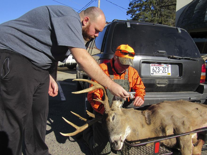 FILE - In this Nov. 21, 2016 file photo, Daniel Crook, right, looks at a photo Dan Ruhland took of Crook's nine point deer  in downtown Plain, Wis. The Wisconsin Conservation Congress plans to ask outdoor lovers whether the state should again offer bounties for deer infected with chronic wasting disease. The congress plans to put the question to attendees at its statewide spring hearings in April 2019. (Barry Adams/Wisconsin State Journal via AP, File)