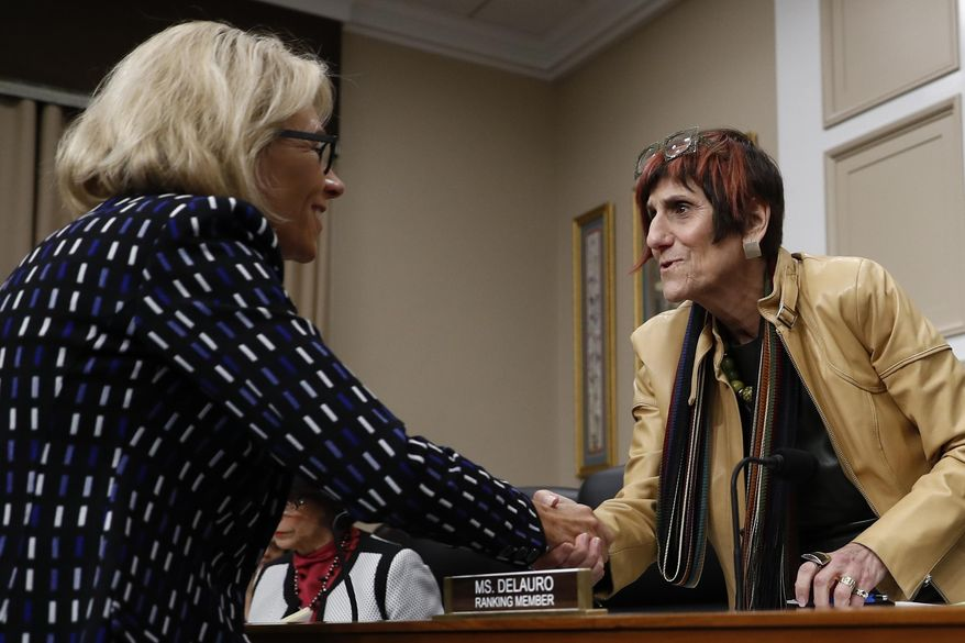 FILE - In this May 24, 2017 file photo, Rep. Rosa DeLauro, D-Conn., center, ranking member on the House Appropriations Labor, Health and Human Services, Education, and Related Agencies subcommittee, greets Education Secretary Betsy DeVos on Capitol Hill in Washington.  House Democrats are preparing to bring Education Secretary Betsy DeVos under the sharpest scrutiny she has seen since taking office. DeVos has emerged as a common target for Democrats as they take charge of House committees that wield oversight powers including the authority to issue subpoenas and call hearings. At least four Democrat-led committees are expected to push DeVos on a range of topics. (AP Photo/Carolyn Kaster)