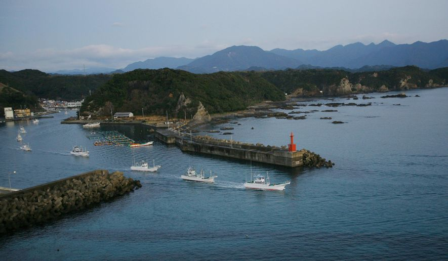 In this Jan. 29, 2008, file photo, fleet of fishing boats leave Taiji port, in Japan for a day of fishing. Japanese whalers are discussing plans ahead of their July 1, 2019 resumption of commercial hunting along the northeastern coasts for the first time in three decades. (AP Photo/Junji Kurokawa, File)
