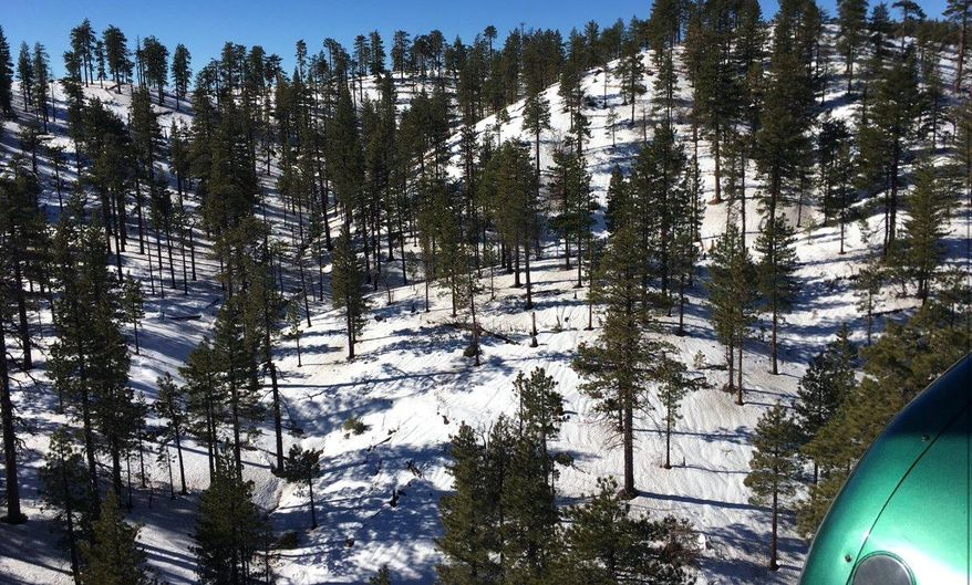 In this Wednesday, Jan. 23, 2019, photo released by the Los Angeles County Sheriff's Department shows an aerial views area where a helicopter rescued two campers off Alamo Mountain, Calif. A couple who went camping and got stranded in the snowy mountains north of Los Angeles for two weeks were rescued by helicopter after running out of food and water, authorities said Thursday. The man and woman in their 30s and two dogs were airlifted from a snow-covered forest near Alamo Mountain on Wednesday by a Los Angeles County Sheriff's Department helicopter. (Los Angeles County Sheriff's Department via AP)