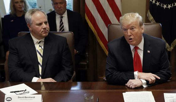 In this Jan. 2, 2019, photo, President Donald Trump speaks during a cabinet meeting at the White House, Wednesday, Jan. 2, 2019, in Washington, as acting Interior Secretary David Bernhardt listens. Trump says he's nominating Bernhardt, a Washington veteran with lobbying ties to U.S. energy companies, to lead the Interior Department. (AP Photo/Evan Vucci) **FILE**