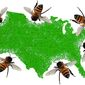 Bee Bites Illustration by Greg Groesch/The Washington Times