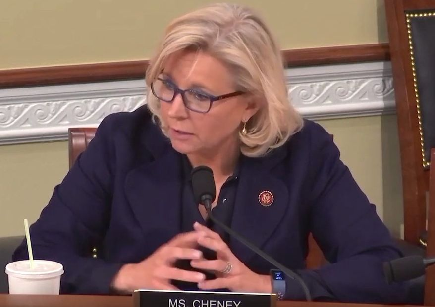 """Wyoming Rep. Liz Cheney discusses the """"Green New Deal"""" during a natural resources subcommittee hearing titled """"Climate Change: Preparing for the Energy Transition,"""" Feb. 12, 2019. The Republican attempted to get panelists to unpack how air travel regulations would affect everyday Americans. (Image: YouTube, Liz Cheney)"""