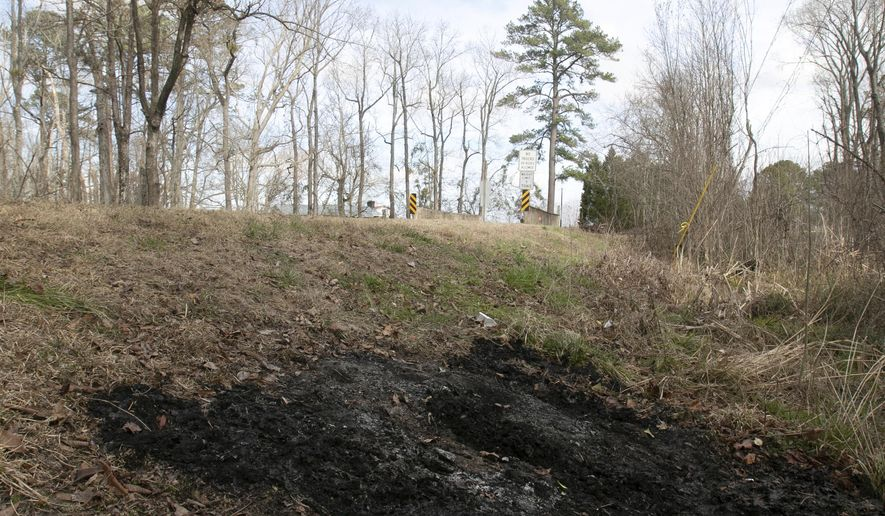 In this February 12, 2019 photo, a burned patch of grass and weeds along Beaman Road show where a body was dumped and burned sometime late Monday night, Feb. 11, a few miles west of New Bern, N.C. The Forsyth County Sheriff's Office tells news outlets it's charged 23-year-old Norris Dwayne Rochelle Jr. with murder in the death of his 40-year-old roommate, Nicholas Williams.  (Bill Hand/Sun Journal via AP)