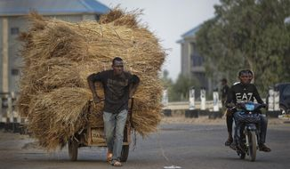 A manual laborer pulls a cart of hay as men drive past on a motorcycle, near the offices of the Independent National Electoral Commission in Kano, northern Nigeria Thursday, Feb. 14, 2019. Nigeria's main opposition party charged Thursday that the election commission has kept more than 1 million ghost voters on the national register, raising fears of vote rigging ahead of Saturday's presidential election. (AP Photo/Ben Curtis)
