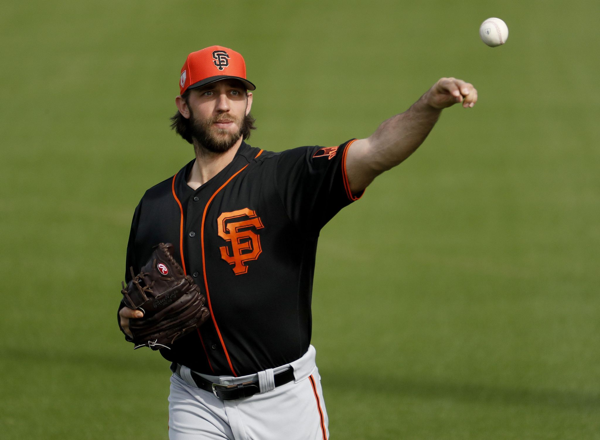 Giants_baseball_14350_s2048x1502