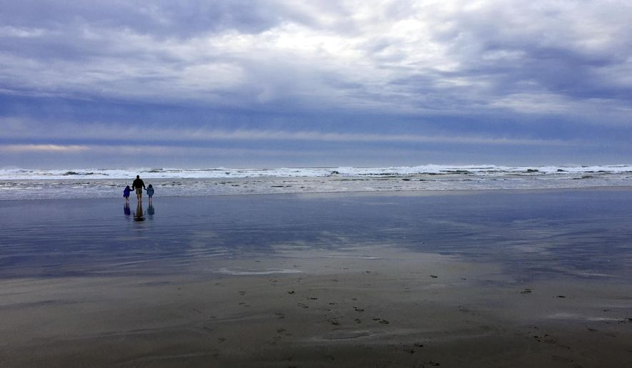 In this Jan. 14, 2018 photo, a family walks on the beach at Fort Stevens State Park near Astoria, Ore. Fort Stevens is one of three state parks that collectively accounted for more than half of the increase in overnight camping stays at Oregon's parks. Oregon set a record in 2018 with 2.9 million campers and had the second-highest number ever of total visitors with 54 million people. (AP Photo/Gillian Flaccus)