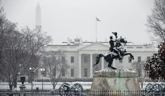 Snow falls on the White House during a winter storm, Wednesday, Feb. 20, 2019, in Washington. (AP Photo/Evan Vucci) **FILE**