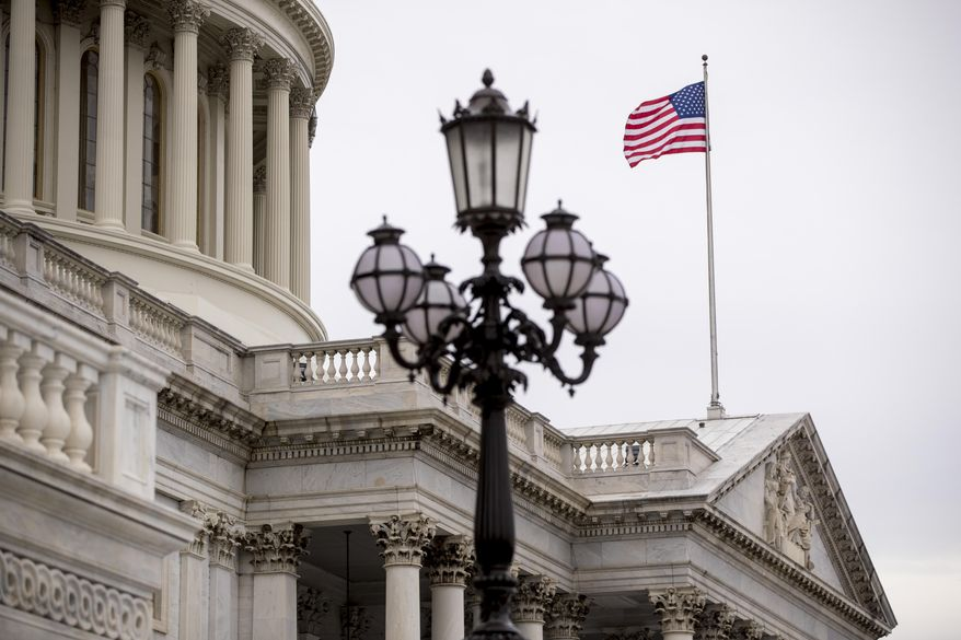 The U.S. Capitol Building in Washington, Friday, Feb. 22, 2019, is seen in this file photo.  (AP Photo/Andrew Harnik) **FILE**