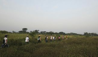 """Youths wearing white T-shirts and Venezuelan flags hike through an unmarked trail between high bushes to sneak into Colombia, for the """"Venezuela Aid Live"""" concert on the Colombian side of the border, in Palotal, Venezuela, Friday, Feb. 22, 2019. Venezuela's power struggle is set to become a battle of the bands Friday when musicians demanding President Nicolas Maduro allow in humanitarian aid and those supporting his refusal sing in rival concerts being held at both sides of a border bridge where tons of donated food and medicine are stored.(AP Photo/Fernando Llano)"""