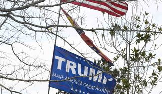 An American flag, a Confederate flag and a Trump flag fly among the destruction near Lee County Road 38 in Beauregard, Ala., Monday, March 4, 2019, a day after fatal tornados ravaged the area. (AP Photo/Julie Bennett)