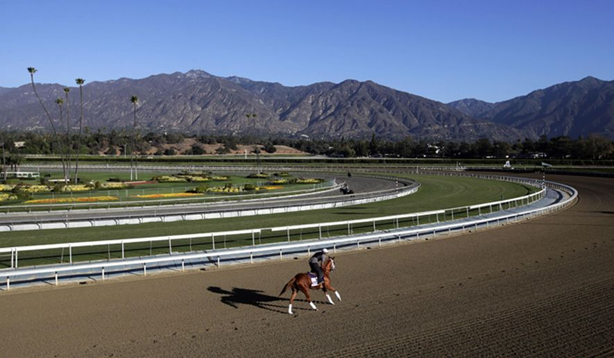 FILE - In this Oct. 30, 2013 file photo, an exercise rider takes a horse for a workout at Santa Anita Park with palm trees and the San Gabriel Mountains as a backdrop in Arcadia, Calif. A person with direct knowledge of the situation says a 21st horse has died at Santa Anita. The person spoke to The Associated Press on the condition of anonymity Tuesday, March 5, 2019, because the fatality has not been announced publicly. A total of 21 horses have died since the racetrack's winter meet began on Dec. 26. (AP Photo/Jae C. Hong, File)