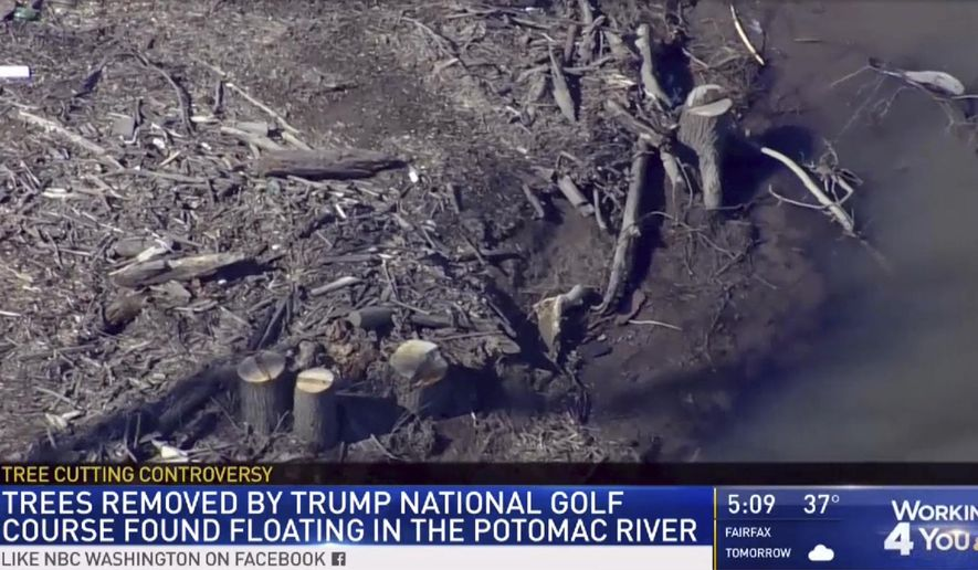 This image provided by WRC/NBC4 Washington on Friday, March 1, 2019, shows trees that were cut down at the Trump National Golf Course in Sterling, Va. County officials in northern Virginia are investigating whether the Trump National Golf Club illegally cut a dozen trees from the Potomac River shoreline and dumped them in the river. Officials in Loudoun County told news outlets Friday that removing trees from the flood plain requires a permit, and the county is investigating whether the local ordinance was broken. (WRC/NBC4 Washington via AP)