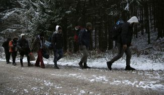 "FILE - In this Nov. 28, 2018 file photo, a group of migrants moves through a forest in the Pljesevica Mountain in a attempt to illegally cross the border into Croatia. Amnesty International released a report on Wednesday, March 13, 2019, that accuses European Union nations of complacency in the ""systematic, unlawful and frequently violent pushbacks"" by Croatian border guards of thousands of asylum-seekers to squalid and unsafe refugee camps in Bosnia. (AP Photo/Amel Emric, File)"