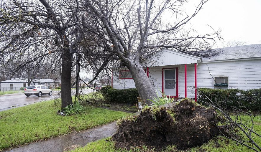 A fallen tree from overnight storms blocks a sidewalk on Wednesday, March 13, 2019, in Dallas.  A line of severe thunderstorms brought strong winds and the risk of tornadoes to parts of Texas and Arkansas. (Smiley N. Pool/The Dallas Morning News via AP)
