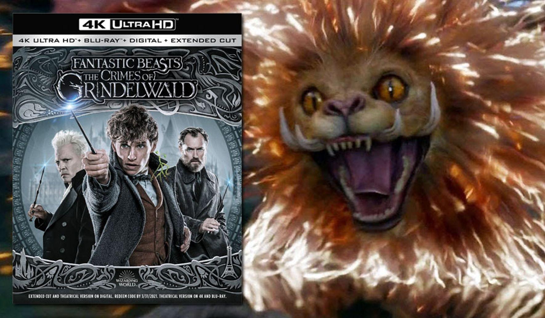 Fantastic Beasts: The Crimes of Grindelwald' 4K Ultra HD