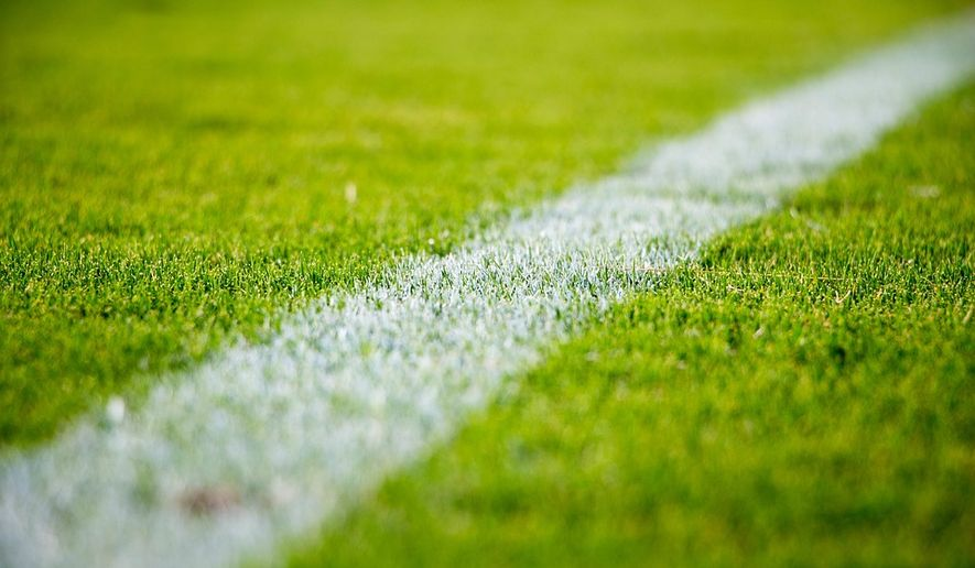 FILE: soccer field via Pixabay