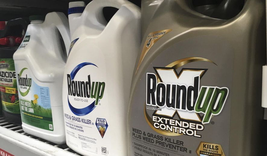 FILE - In this Sunday, Feb. 24, 2019 file photo, containers of Roundup are displayed on a store shelf in San Francisco. A jury in federal court in San Francisco has concluded that Roundup weed killer was a substantial factor in a California man's cancer. The unanimous verdict on Tuesday, March 19, 2019, came in a trial that plaintiffs' attorneys said could help determine the fate of hundreds of similar lawsuits against Roundup's manufacturer, agribusiness giant Monsanto.  (AP Photo/Haven Daley, File)