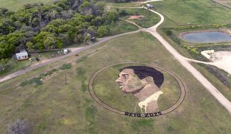 A crop art portrait of presidential candidate Beto O'Rourke is seen Tuesday, March 19, 2019 just east of Austin, Texas. Kansas artist Stan Herd is responsible for the work, which is visible to passing airplanes. He says he wants to show support for O'Rourke, who rose to prominence while trying to unseat Republican Sen. Ted Cruz in 2018.  (William Luther/The San Antonio Express-News via AP)