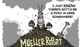 The Mueller Files