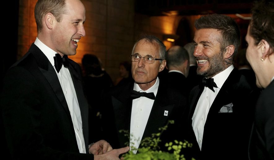 "Britain's Prince William and David Beckham during the global premiere of Netflix's ""Our Planet"" at the Natural History Museum in London, Thursday April 4, 2019. (John Sibley/Pool via AP)"