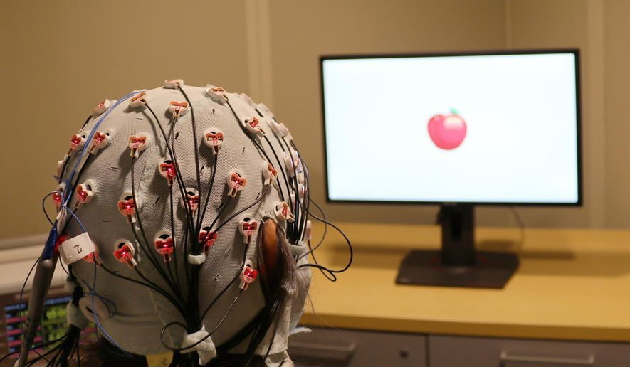 This Friday, April 5, 2019 photo provided by Boston University shows a cap that administers electrical stimulation and monitors brain waves for a visual working memory test at one of the school's laboratories. A study released on Monday, April 8, 2019, finds that zapping the brains of people over 60 with a mild electrical current improved a form of memory enough that they performed like people in their 20s. (Rob Reinhart/Boston University via AP)