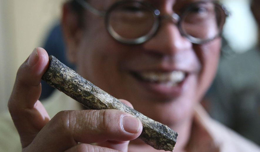 Filipino archeologist Armand Salvador Mijares shows a femur bone, one of those they recovered from Callao Cave belonging to a new specie they called Homo luzonensis, during a press conference in metropolitan Manila, Philippines on Thursday, April 11, 2019. Fossil bones and teeth found in Cagayan province, northern Philippines, have revealed a long-lost cousin of modern people, which evidently lived around the time our own species was spreading to Africa to occupy the rest of the world. (AP Photo/Aaron Favila)